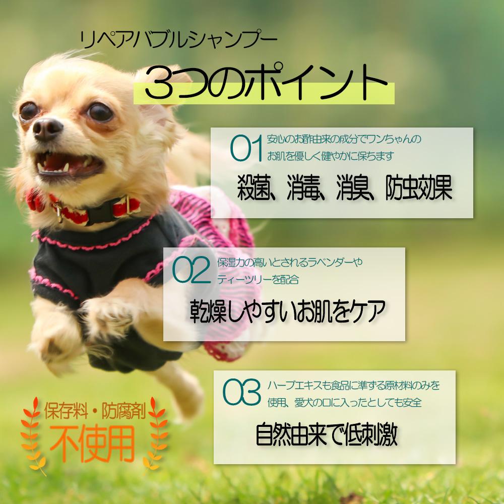 シャンプー 犬 ワンちゃん