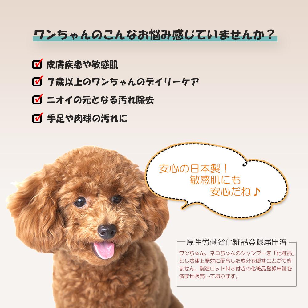 犬 皮膚疾患