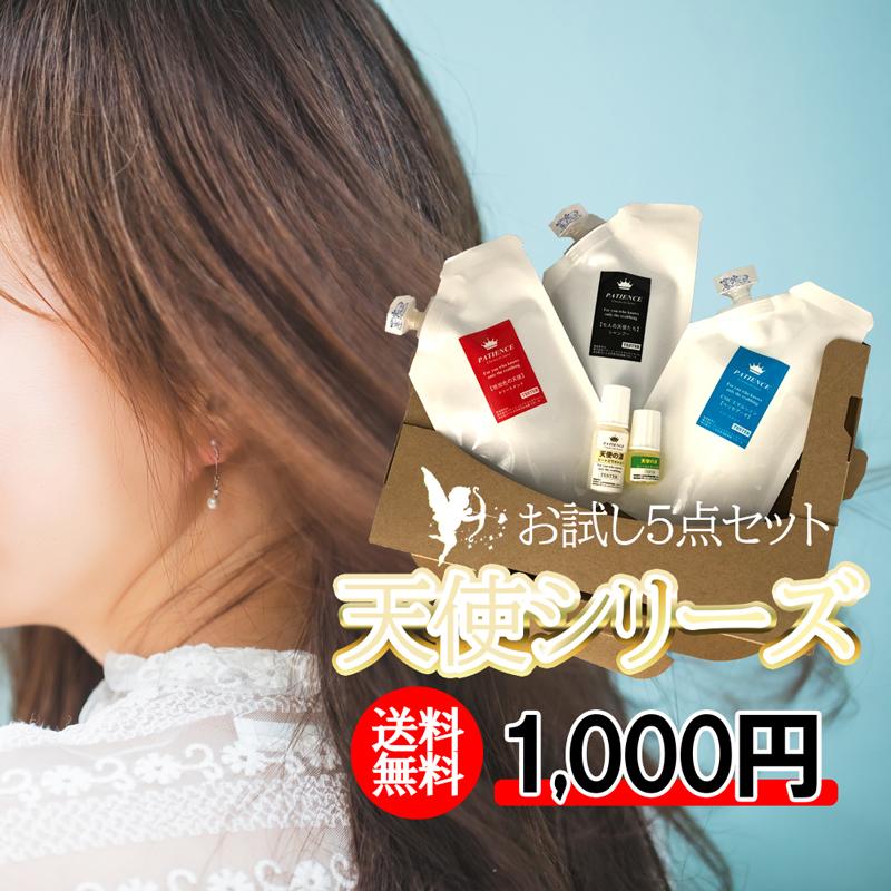 ¥1000お試しセット